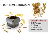 top level domain international