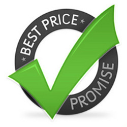 Biaya Hosting dan Domain Website