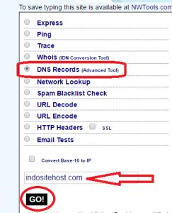 Cara Menghubungkan Domain ke Hosting, DNS Lookup
